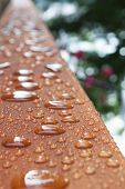 Deck Rail After Rain