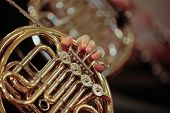stock photo of orchestra  - Detail close up of French Horn musical instrument part of the Brass family of instruments