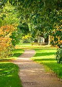 image of royal botanic gardens  - Footpath at the Royal Botanic Gardens in London - JPG