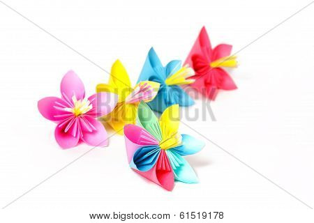 Five Colored Paper Flowers And Flower With Varicolored Petals