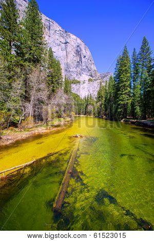 Yosemite Merced River and el Capitan in California National Parks US