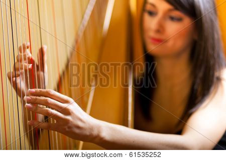 Elegant woman playing the harp
