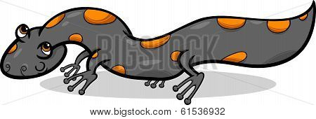 Salamander Animal Cartoon Illustration