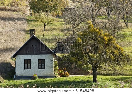 Weekend House With Tree