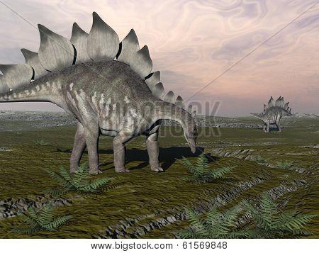 Hungry stegosaurus - 3D render