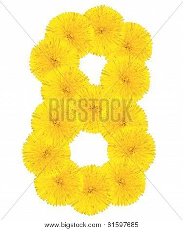 Number 8 Made From Dandelion Flower
