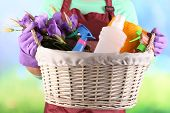 stock photo of spring-cleaning  - Housewife holding basket with cleaning equipment on bright background - JPG
