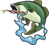 picture of bass fish  - An illustrated Large mouth Bass jumping and splashing - JPG