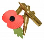 Remembrance Day Poppy And Bullets