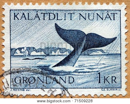 Whale Stamp