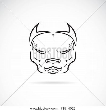 Vector image of a dog pitbull head