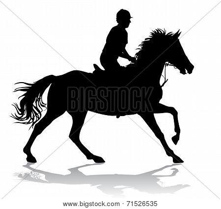 Rider On Horse 2