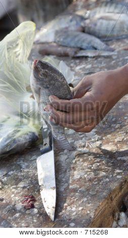 Pescar en la mano