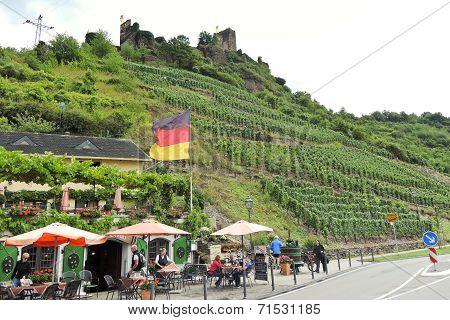 Vineyards And Restaurant Under Metternich Castle