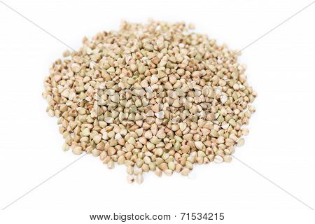 Buckwheat (isolated)