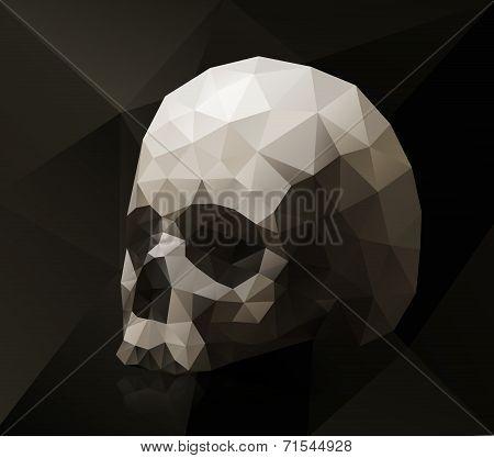 Triangular skull