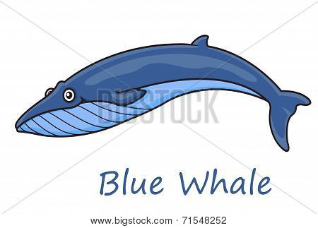 Cartoon ocean blue whale
