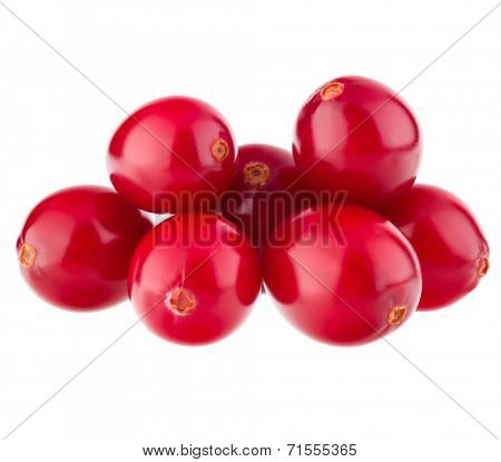 cranberry  isolated on white background cutout