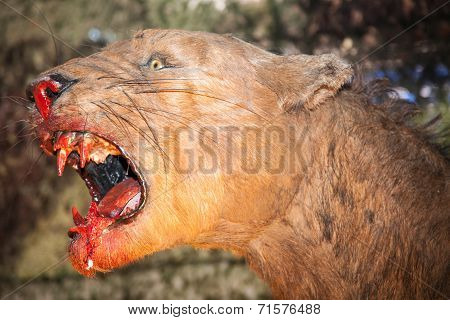 Realistic Model Of Prehistoric Animal