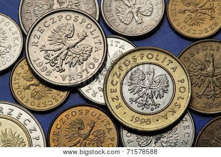 Coins of Poland. Polish national coat of arms the White Eagle depicted in Polish zloty coins.