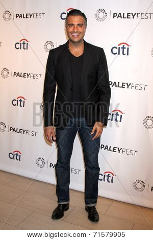 LOS ANGELES - SEP 6:  Jaime Camil at the Paley Center For Media's PaleyFest 2014 Fall TV Previews - The CW  at Paley Center For Media on September 6, 2014 in Beverly Hills, CA
