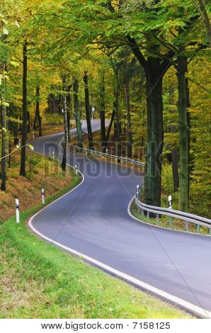 Autum Road