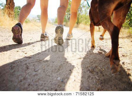 a dog out enjoying nature with two women