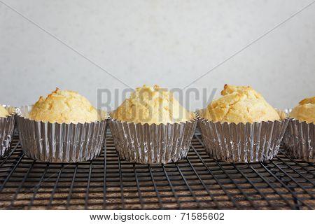 Line of Corn Muffins