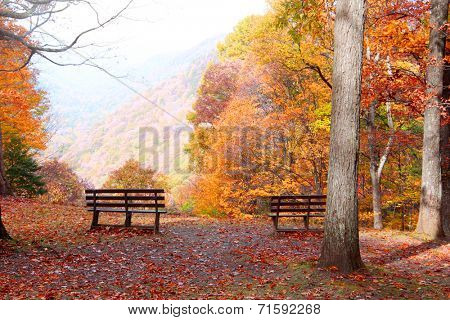 Relaxing benches in the park in autumn time