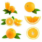 stock photo of fruit-juice  - Oranges fruits collection - JPG