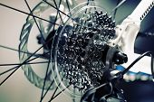 picture of bicycle gear  - Bicycle gears cassette and chain on mountain bike - JPG