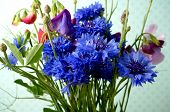 foto of sweetpea  - bouguet with cornflower and sweetpea - JPG