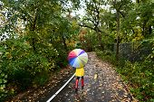 picture of rainy day  - Autumn  - JPG
