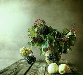 picture of elderberry  - Autumn bouquet - JPG