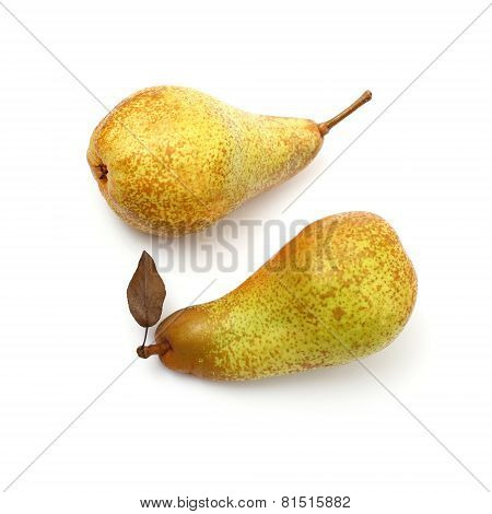 Two Abate Fetel Pear With Leaf, Top View