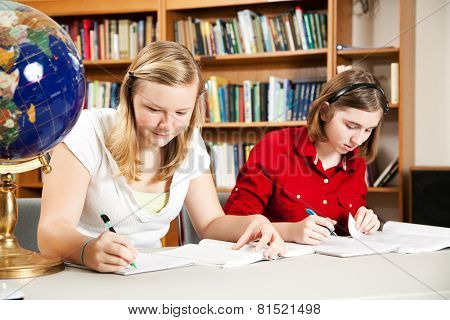 Teenage girls studyng, doing homework in school library.