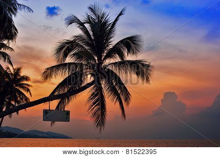 Palm Trees Silhouettes On The Colorful Sky Background