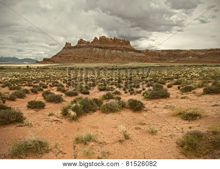 Landscape of beautiful desert nature in Utah Southwest USA