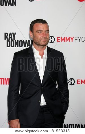 LOS ANGELES - APR 28:  Liev Schreiber at the