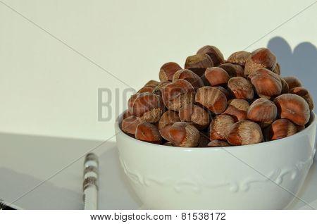 Hazelnut Filbert