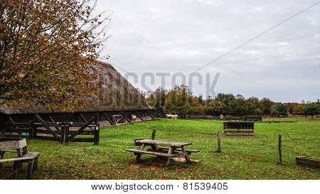 Sheep Pen and Barn in Europe
