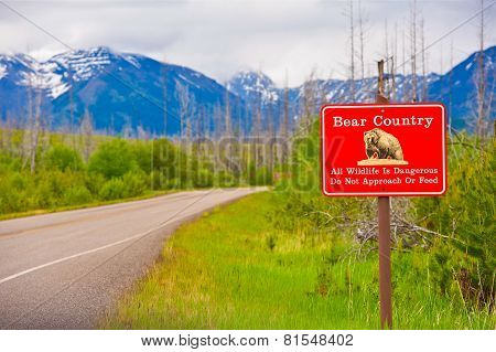 Bear Country Warning