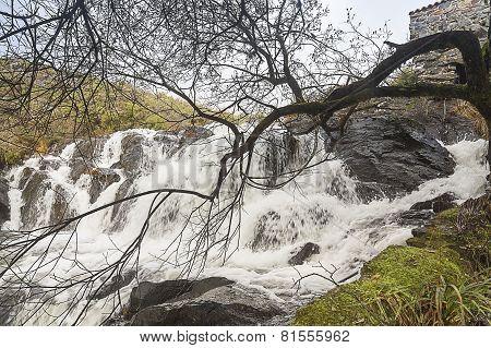Cascade Castriz