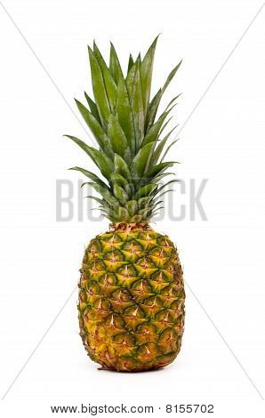 Pinaple Isolated On White
