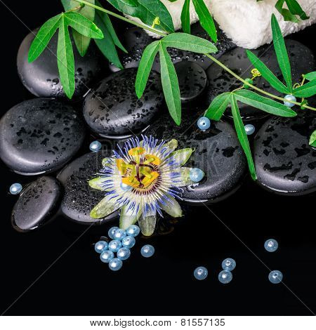 Spa Background Of Passiflora Flower, Branches, Towels, Zen Basalt Stones With Drops And Blue Pearl B