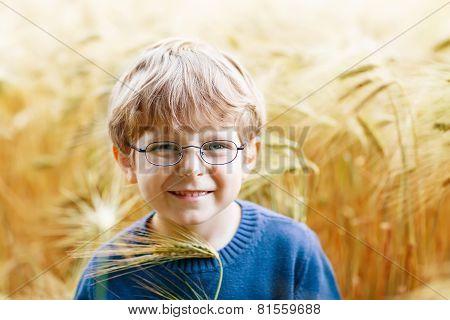 Adorable Preschooler Kid Boy With Glasses In Wheat Field