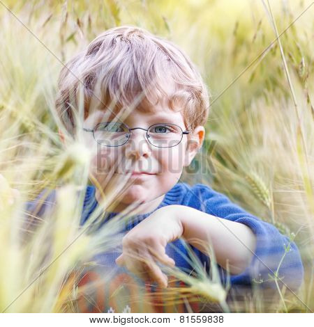 Adorable Preschooler Kid Boy With Glasses In Wheat Field