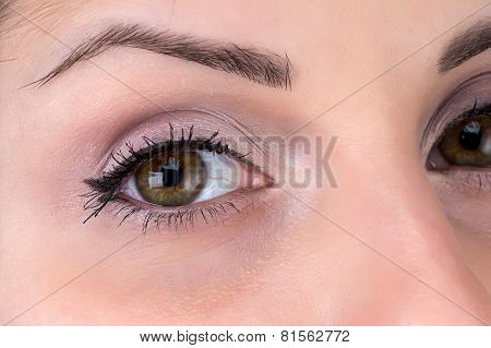 Photo of brunette woman's eye