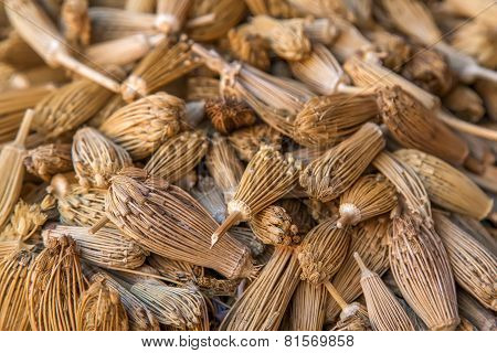 Berber Toothpicks