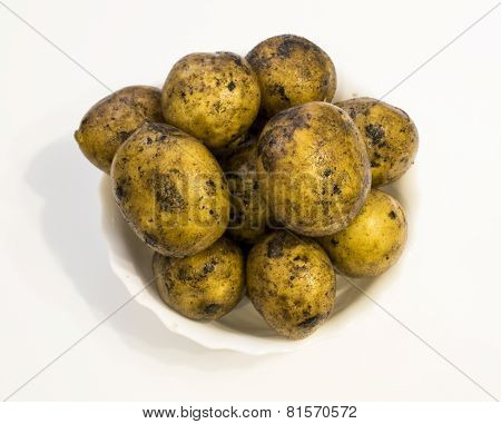 The Crude Potatoes